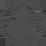 LEVIS-501
